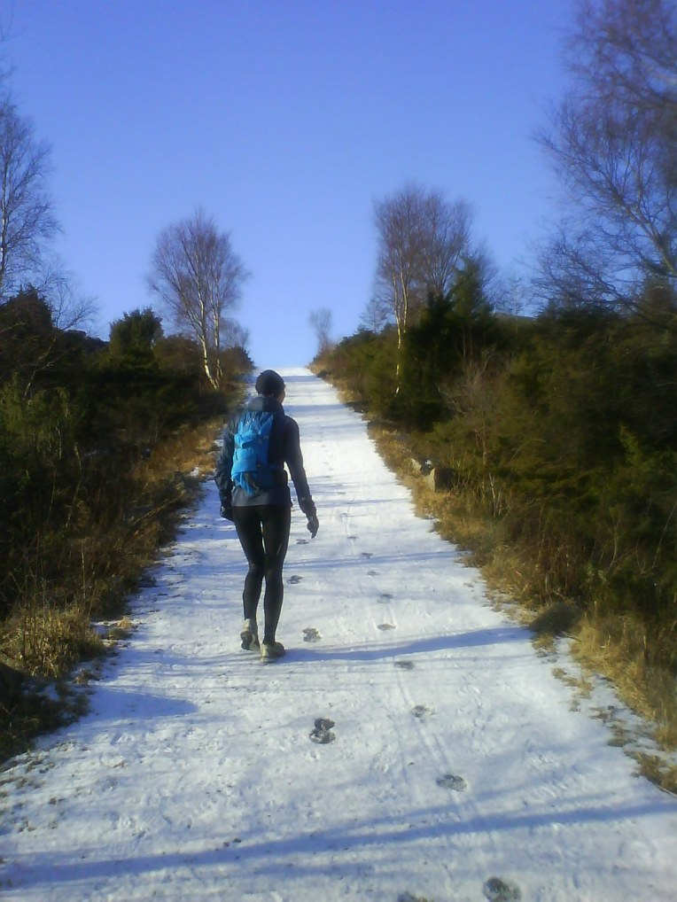 If only all winter runs had such nice weather...