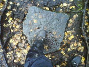 Snowdon boots fra Vegetarian Shoes ved Månafossen - våte utenpå men tørre inni