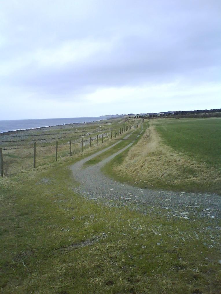 Kongevegen, Varhaug. Endelig terreng og sjøutsikt igjen.