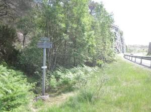 Starten av Lysefjorden Inn går på vei. Her, ved Botneheia, begynner man å løpe i terrenget.